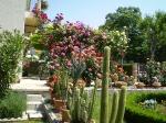 cvijetni-raj